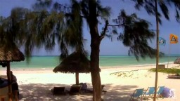 Paje beach, Zanzibar, Tanzania. Live streaming webcam.